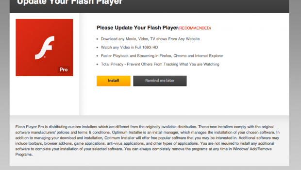 WARNING! Your Flash Player may be out of date
