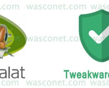 etisalat | Wasconet
